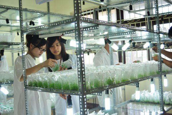Giới thiệu ngành Công nghệ Sinh học | Yersin University