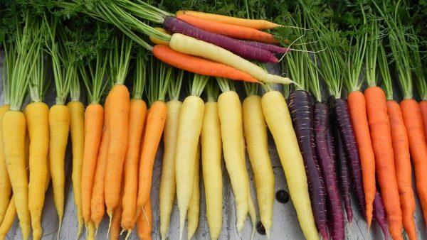10 tác dụng của cà rốt, cách chọn mua và các món ăn từ cà rốt
